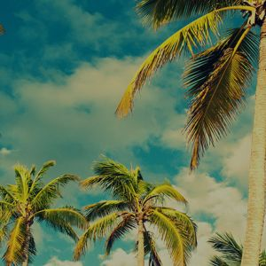 Cheap Flights to South Pacific from Mix & Match